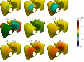 Isogeometric Analysis of the electrophysiology in the human heart: Numerical simulation of the bidomain equations on the atria